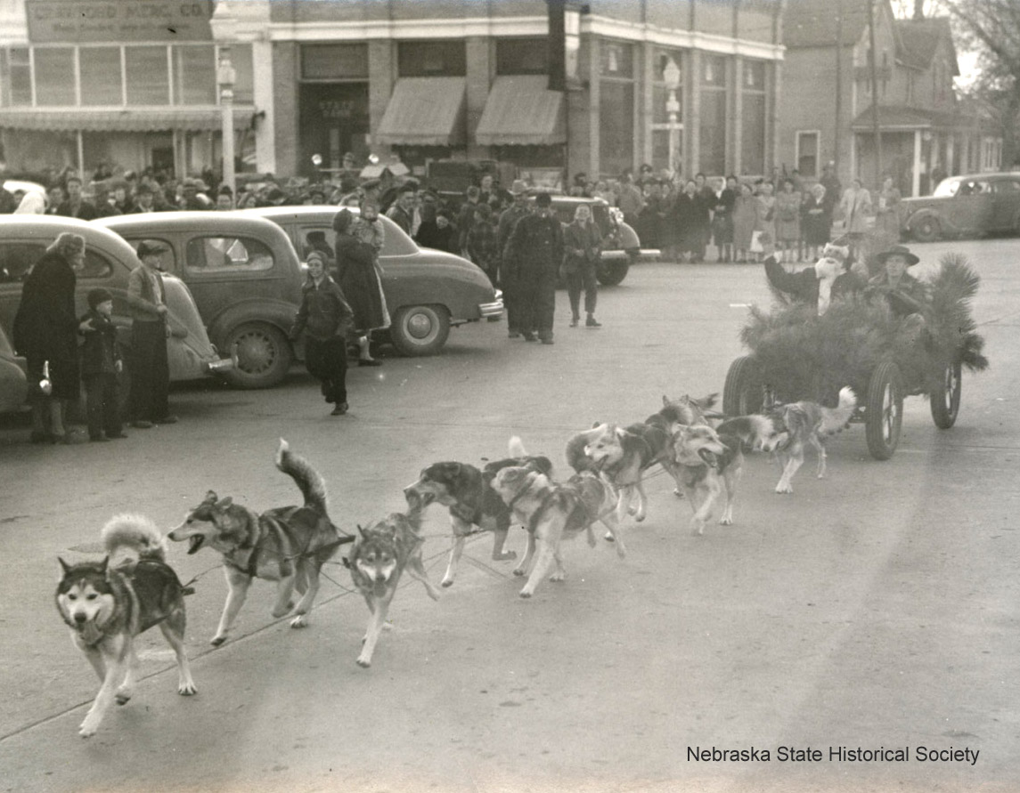 A team of nine Huskies hitched to a four wheeled vehicle with a man steering & Santa sitting next to him. (RG1517.PH52-98)