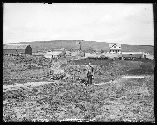 Anton Smock and his farm near Oconto, Custer County, Nebraska, 1904 [RG2608.PH1764]