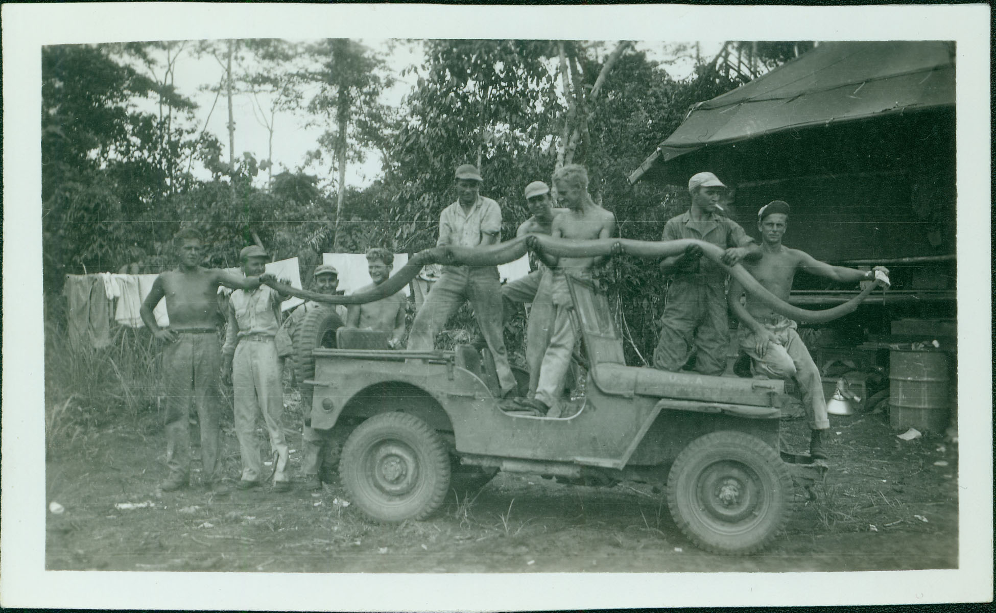 Men with large snake on jeep [RG5841-9-11]