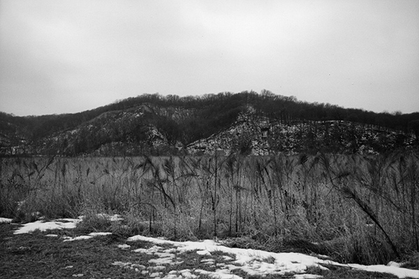photo of wooded bluff