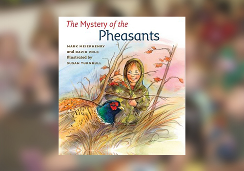 cover of The Mystery of Pheasants
